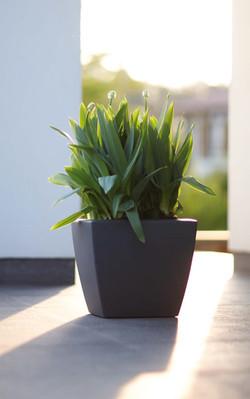 Graphite Planters