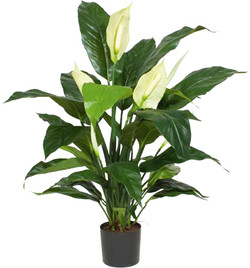 Artifical Plants for Offices Funky Yukka (7)