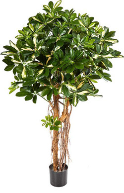 Artifical Plants for Offices Funky Yukka (55)