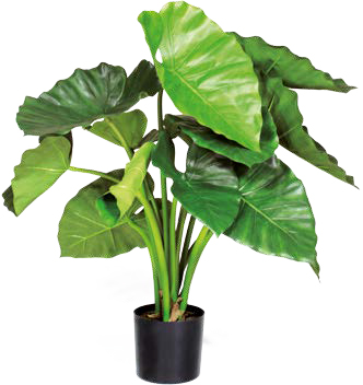 Artifical Plants for Offices Funky Yukka (11)