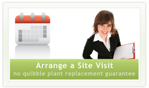 Office Plants Arrange a Site Visit