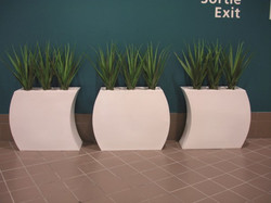 Screening Barrier Partition Displays (3)
