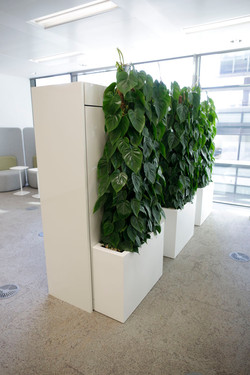 Screening Barrier Partition Displays (15)
