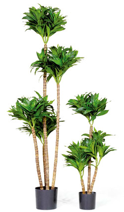Artifical Plants for Offices Funky Yukka (43)