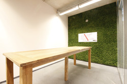 Moss Walls Funky Yukka (8)