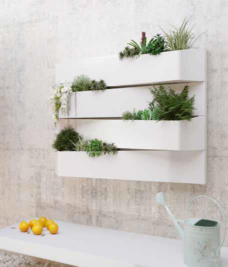 Rent Plants Manchester (1)