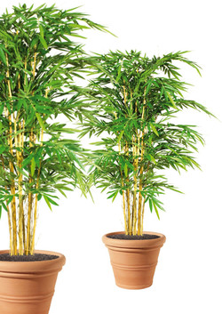 Artifical Plants for Offices Funky Yukka (1)