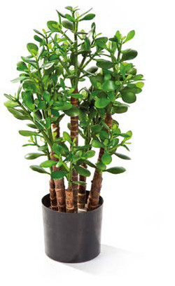 Artifical Plants for Offices Funky Yukka (39)