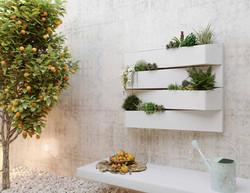 Rent Plants Manchester (4)