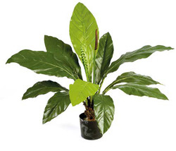 Artifical Plants for Offices Funky Yukka (28)