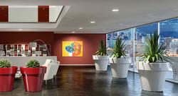 Office Plants Interior Plant Displays (6)