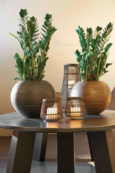 Twin Globe Pots