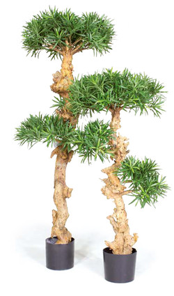 Artifical Plants for Offices Funky Yukka (49)