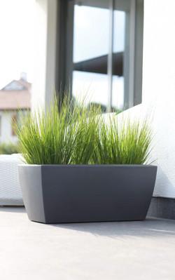 Gorgeous Grass