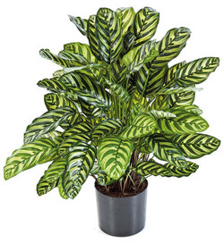 Artifical Plants for Offices Funky Yukka (38)