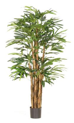 Artifical Plants