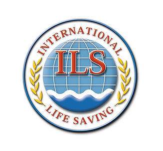 ILS-3D-Logo-Large-Clear.jpg