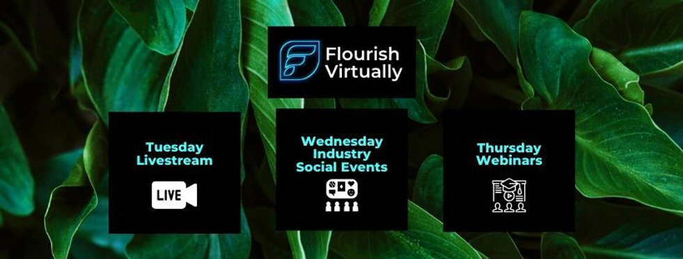 Flourish Virtually Email (1).jpg