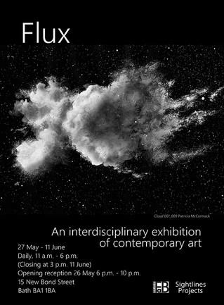 Flux exhibition: FaB17