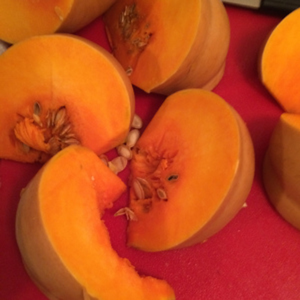 Butterkin Squash just before seeding and roasting