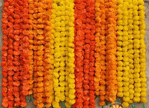 How to prepare artificial marigold garlands in less than 2 minutes right out of the packaging