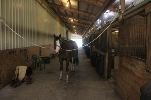 Lower barn, East wing.