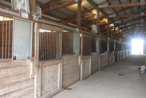 Upper barn aisleway, stalls, and upper indoor arena.