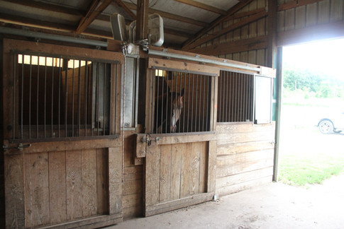 Upper barn stall and aisleway opening into upper parking lot.