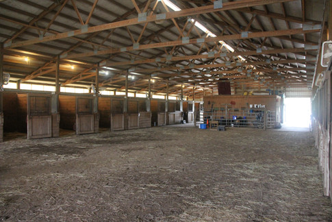 Upper indoor arena, stalls, Self-Care feed room, and aisleways.