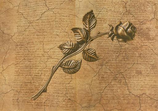 rose-3233903_1920.jpg