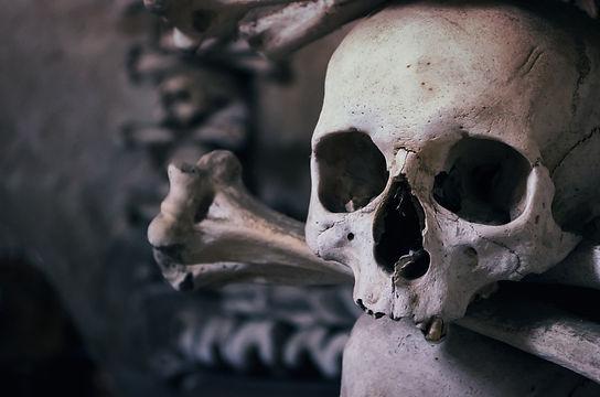 skull-726253_1920.jpg