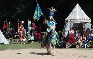knight-1506878_1920.jpg