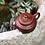 Thumbnail: Yixing Zisha Base Clay Stone Fire Teapot (150ml)
