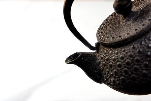 Japanese Iwachu Southern Ironware Teapot
