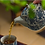 Thumbnail: Qinghua Falling Leaf Teapot
