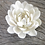 Thumbnail: Snow White Lotus Incense Holders