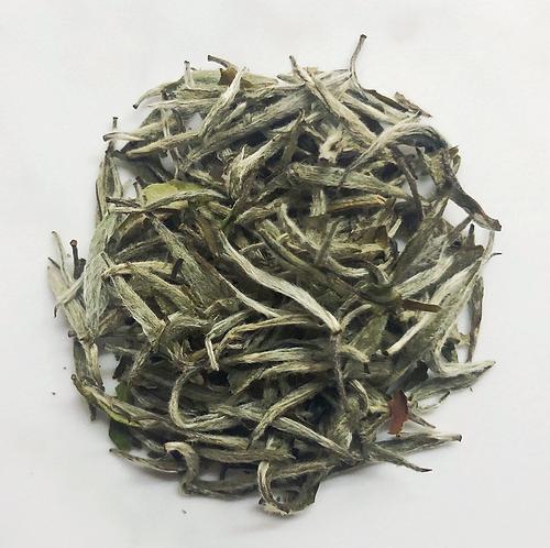 2018 Spring Organic Premium Fuding Silver Needle