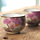 Thumbnail: Sakura Beauty Teacup