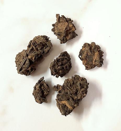2008 布郎山老茶頭 (春茶)