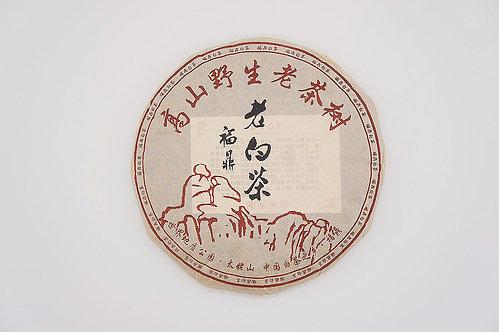 2008野生老茶樹茶餅 (春茶)