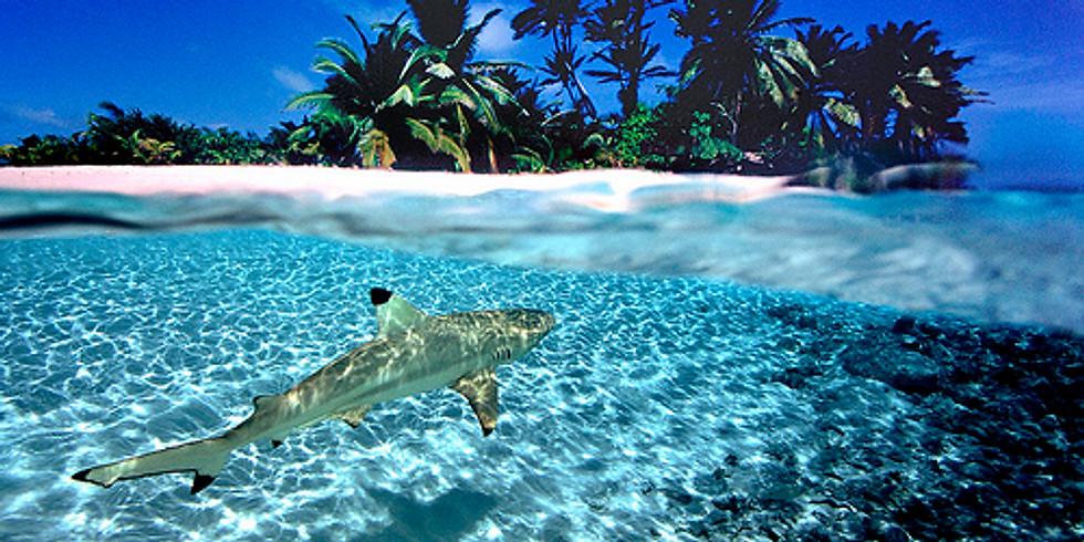 Cocos (Keeling) Island 7 days 2021 Club Trip 1
