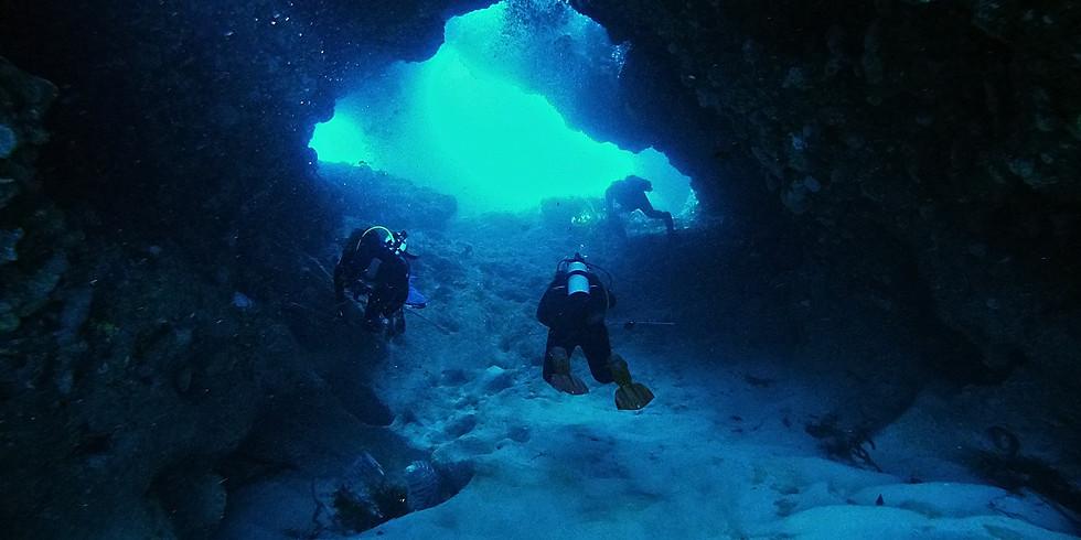 Cigar Reef & Exploration Dive Rotto Drop off