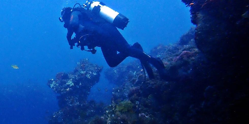 Hugal's Passage Single Dive