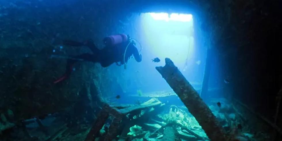 Skipper's Choice (Double Dive) - Rottnest
