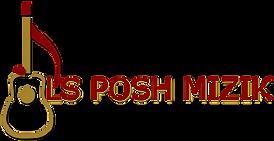 08 LS Posh Mizik Logo by Leyah St Fleur_edited.png