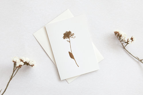 Allium flower card brass on cream