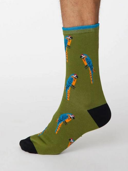 Green parrot socks