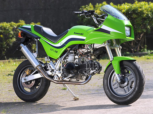 Made to order Mininja KSR110 exterior kit reviving GPZ1100F without paint