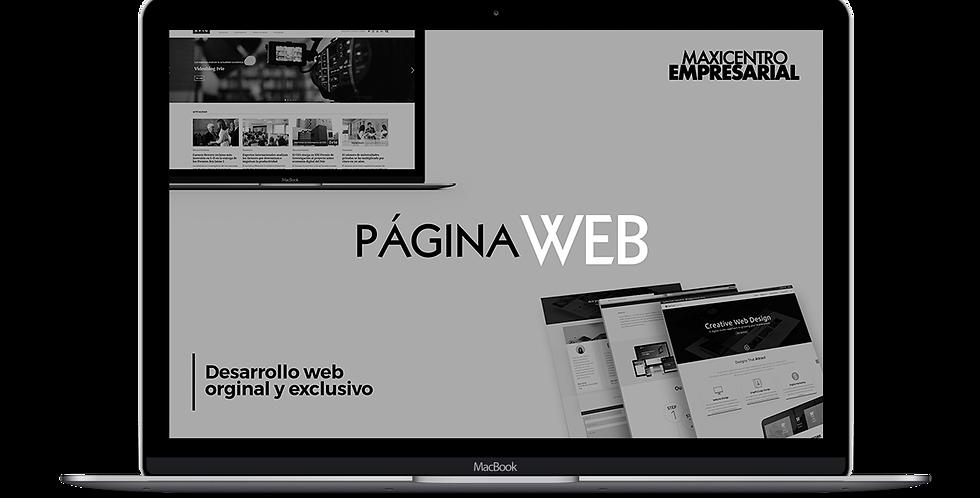 Desarrollo de Pagina Web Demostrativa