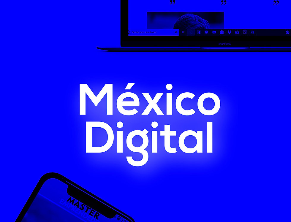 PROGRAMA MEXICO DIGITAL